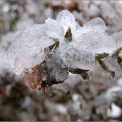 Ледяной дождь бывает и осенью