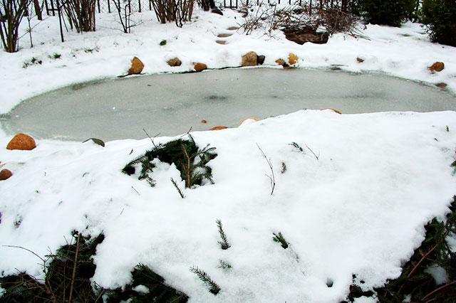 Бассейн зимой