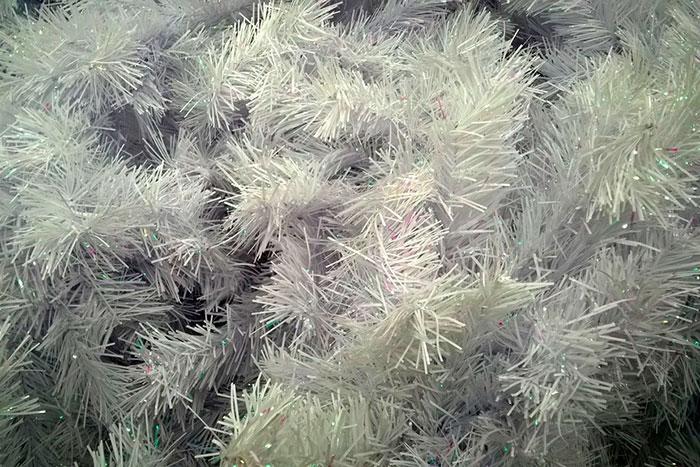 новогодняя ёлка, белые иголки