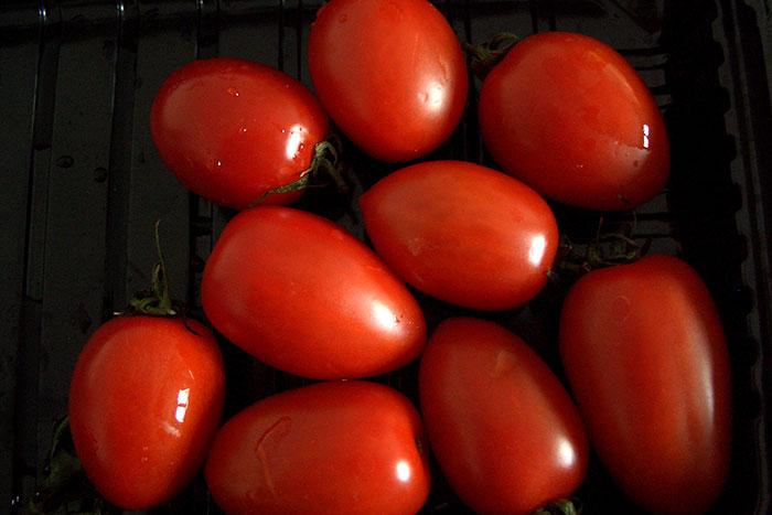 томаты, урожай, сроки посева семян а рассаду
