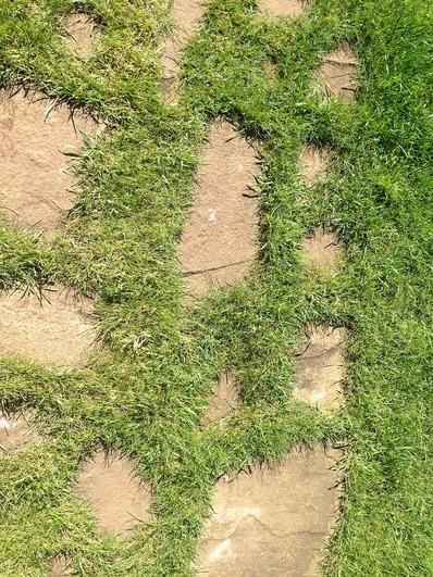 садовая дорожка из камней, трава между камнями на садовой дорожке, садовая дорожка своими руками