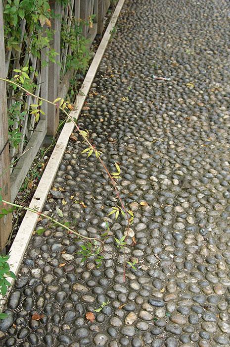 садовая дорожка, садовая дорожка из окатышей, цементное основание под окатышами