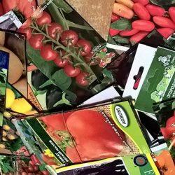 Посев семян овощей и цветов на рассаду в феврале