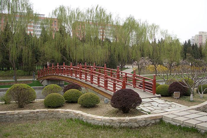 сады Китая, сформированные кустарники, ландшафтный дизайн, фасонная стрижка кустарников