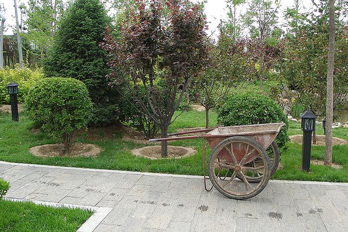 Китай - садовая тачка, китайские сады, тачка китайского садовника