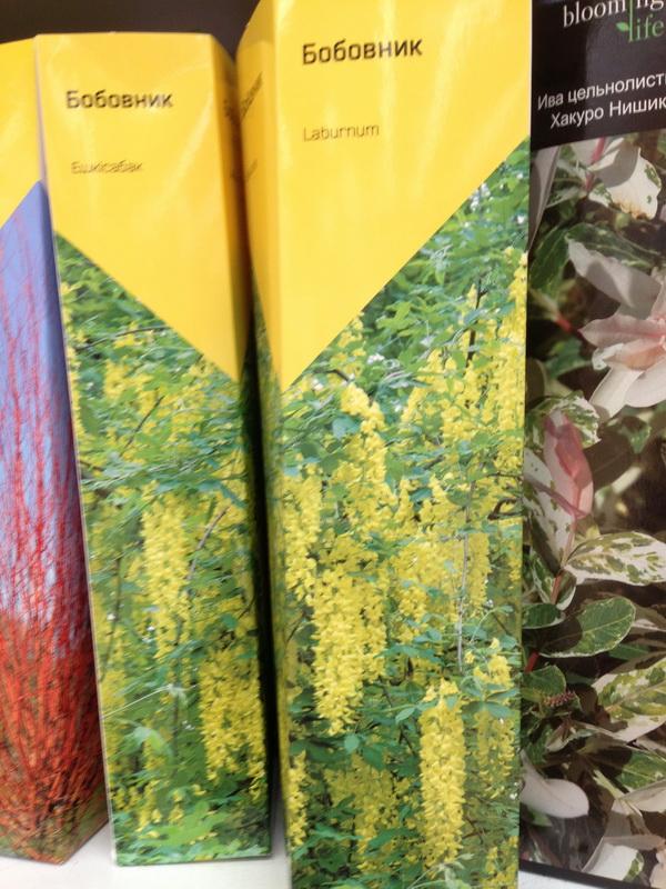 саженцы в коробках, покупаем саженцы с февраля по апрель, как сохранить посадочный материал, качество саженцев, какие саженцы можно покупать, саженцы с распустившимися побегами, качество посадочного материала, саженцы с открытой и закрытой корневой системой