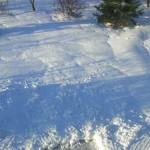 Подготовка газона к зиме, сохранение и спасение газонных трав в зимний период