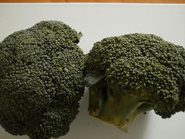 brokkoli-3